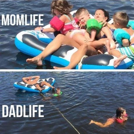 A Mega Dump of 52 Funny Memes That Will Make You Bust a Gut is part of Mom humor - Come take a dip in the meme stream!