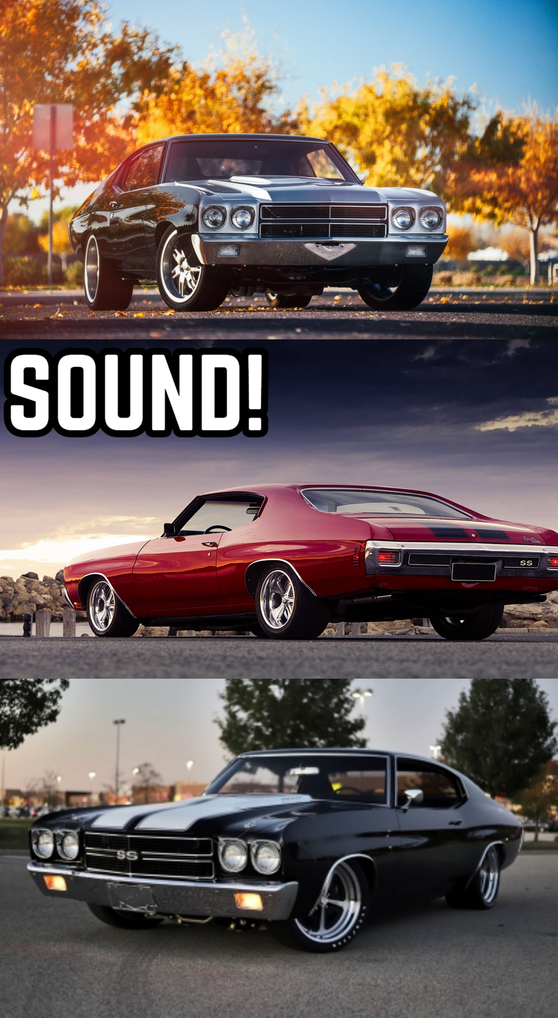Chevrolet Chevelle Brutal Sound Exhaust Sound Compilation The