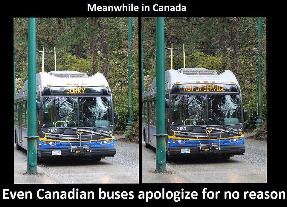 Meanwhile In Canada Canada Funny Meanwhile In Canada Canada Memes