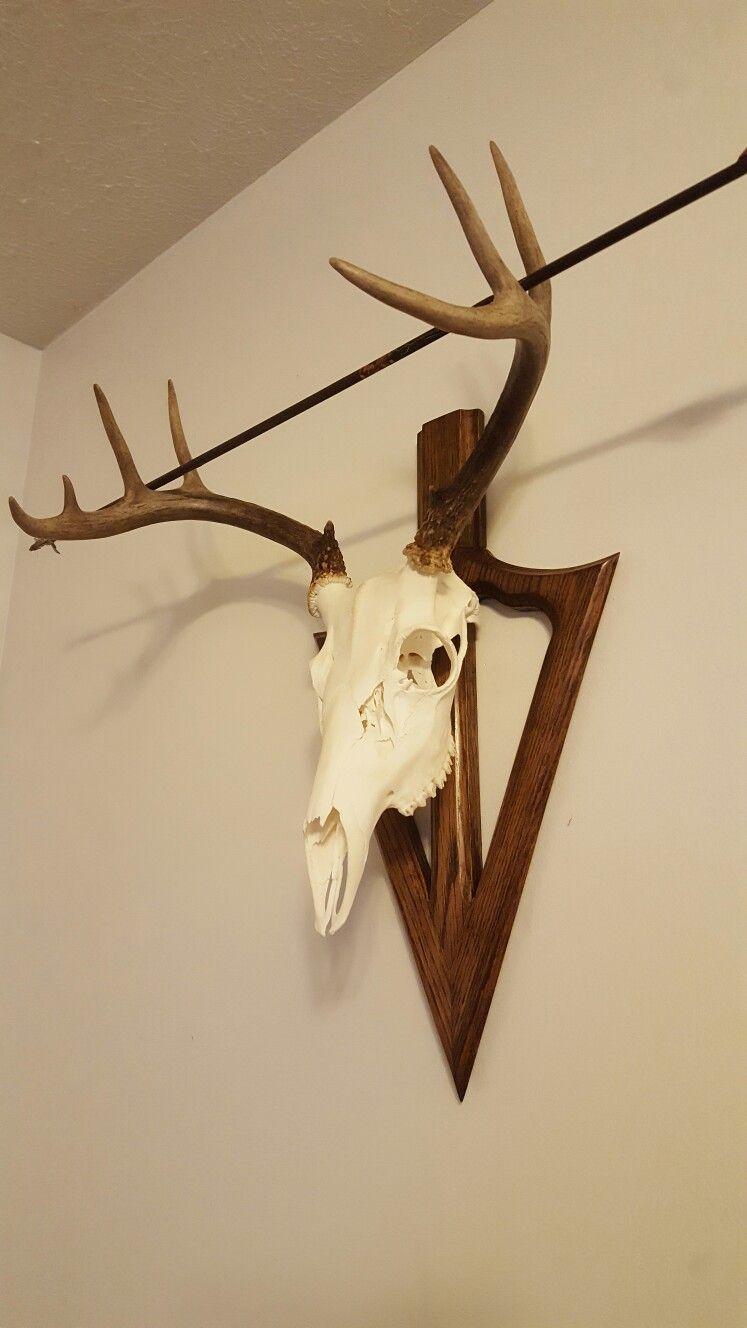 Arrowhead Broadhead Shaped European Or Texas Skull Mount For Archery Buck Doe Bear Hog Coyote Or Deer Hunting Decor European Mounts Deer Deer Antler Decor