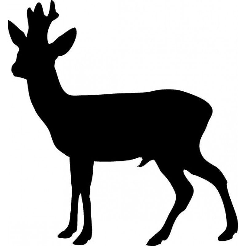 Rå buk Rådyr | Rådyr, Sten kunst, Dyr