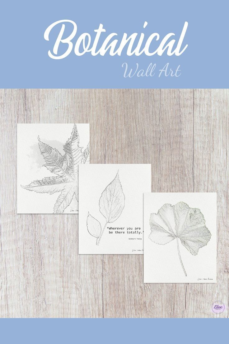 Minimalist Botanical Boho Rustic Wall Décor for Bedroom, Living Room, Kitchen, Office, Dorm & Home     #mindfulness#homeinterior#homedecor#blackandwhite#zen#calm#yoga#meditation#nature#botanical