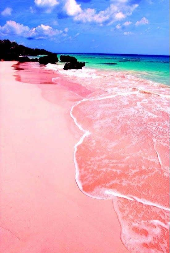 Pink Sand Beach Isla Harbour Bahamas