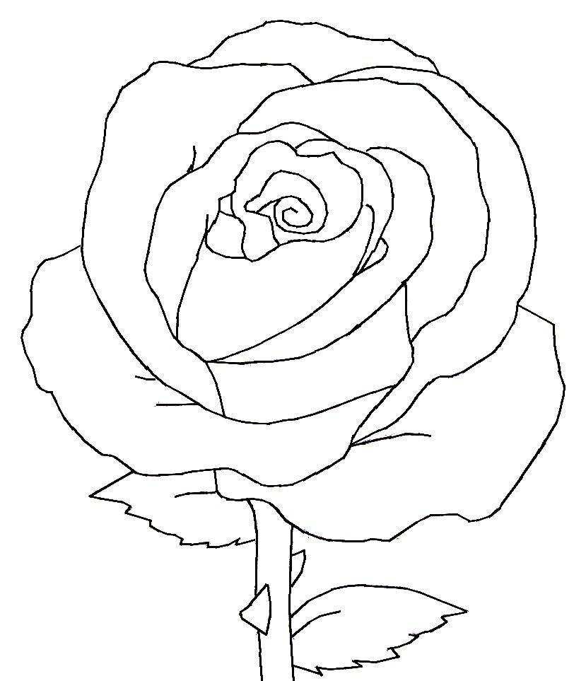 Rose Line Art Rose Drawing Simple Roses Drawing Simple Flower Drawing