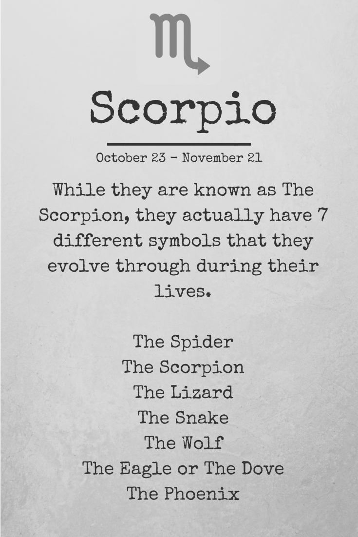 5 Minute Beginner Zodiac Yoga: Scorpio Inspired « Core Misadventures