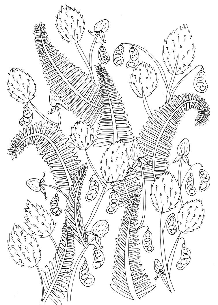Pin On Coloring Pages To Print Flowers