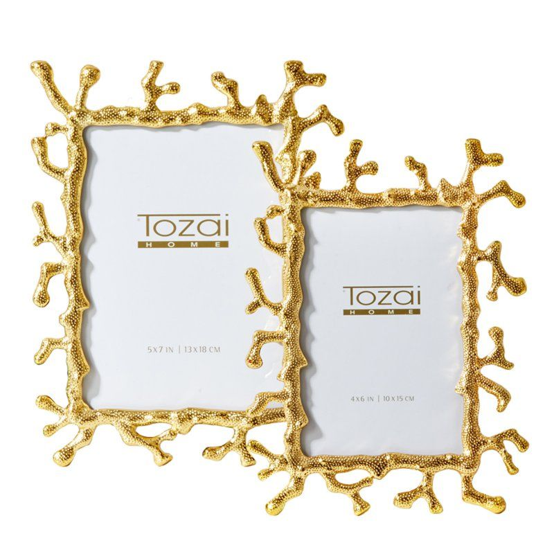 41fba01a2c97 Passport Collection Coral Picture Frame - Set of 2 - VTO107-S2