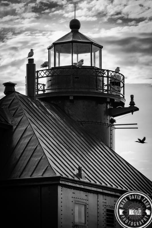 Seagull Layover With Images Art Photo Prints Photography Prints Art Famous Lighthouses