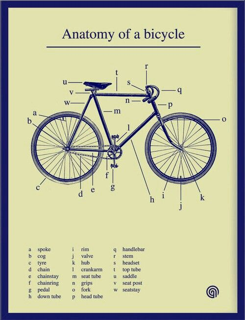 Mountain Bikes Frame Parts History Manual Guide