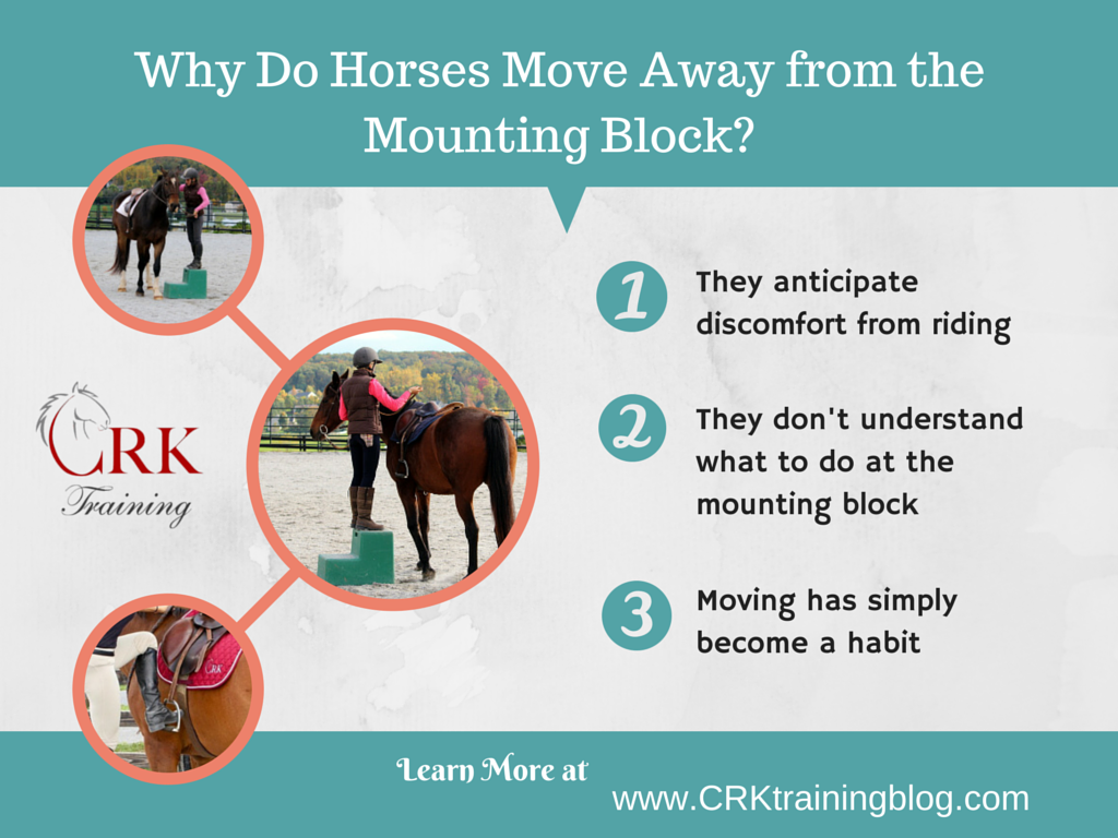 Work through problems at the mounting block with your horse by understanding what may be causing his behavior.