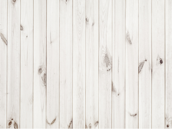 Kate Solid White Retro Wooden Wall Background Backdrop White Wood Texture Wood Texture Background Wood Background