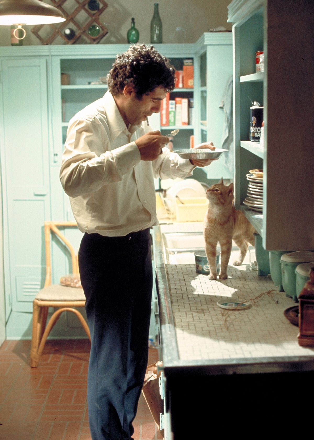 Elliott Gould as Philp Marlow with his cat in The Long