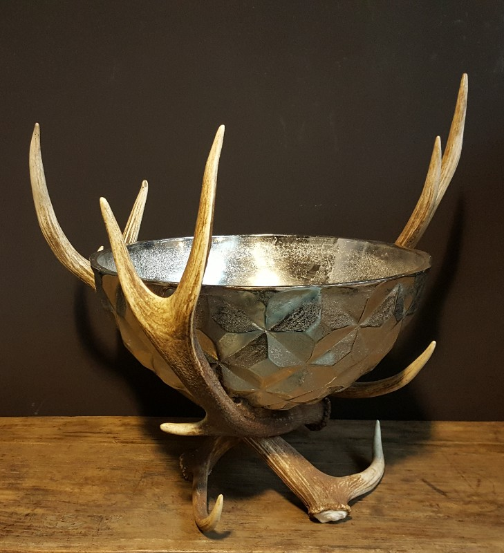 Pin Op Antler Furniture And Decoration