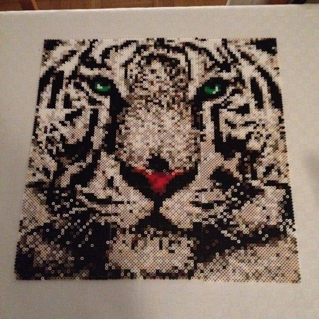 Tiger photopearls perler sprite by skoogsparlan perler - Hama beads cuadros ...