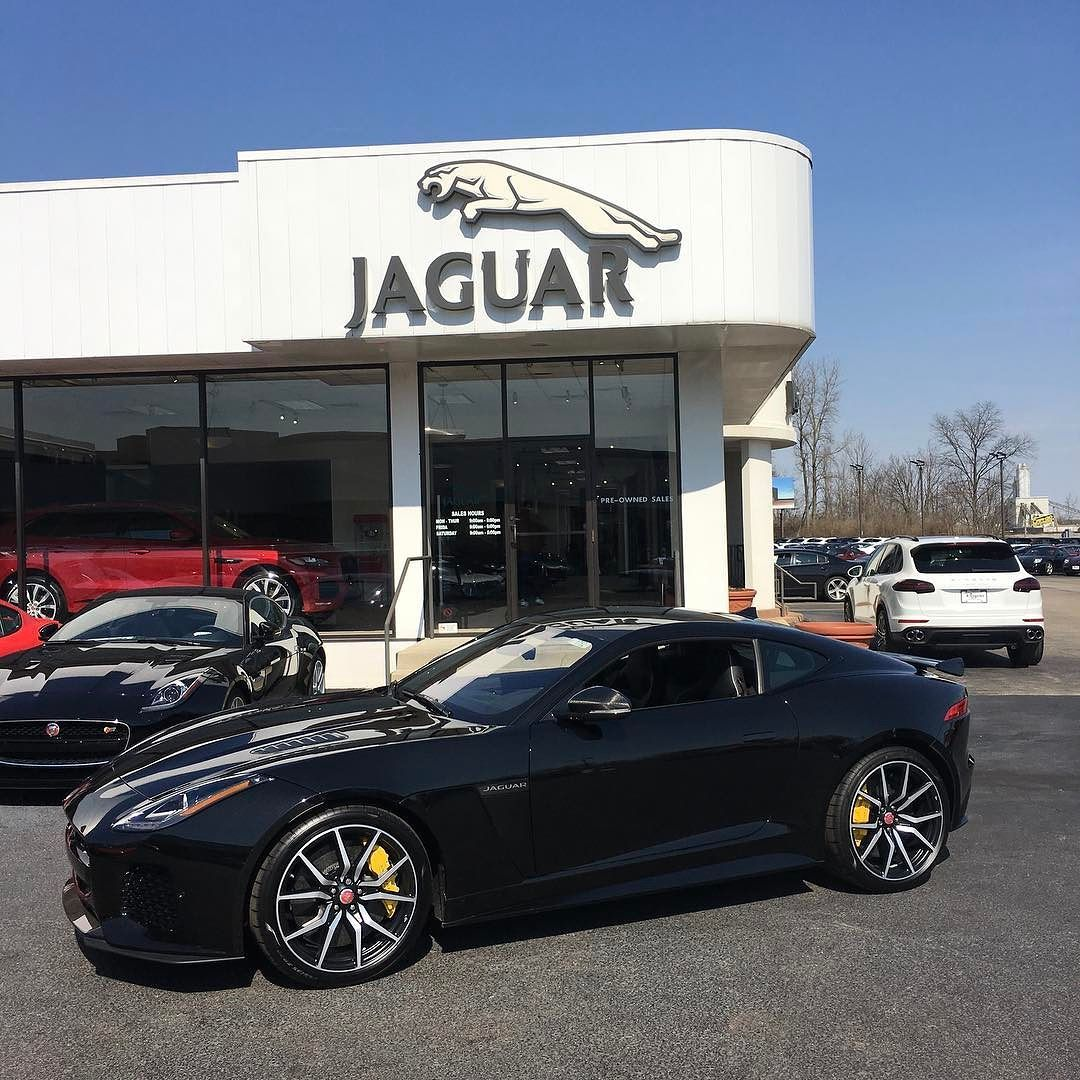 lookout columbus there s a black cat on the loose this 2017 jaguar rh pinterest ca