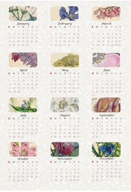 ☞ ☞ More than 50 free printable 2013 calendars – kostenlos ausdruckbare Kalender 2013 #50freeprintables MeinLilaPark: ☞ ☞ More than 50 free printable 2013 calendars – kostenlos ausdruckbare Kalender 2013 #50freeprintables