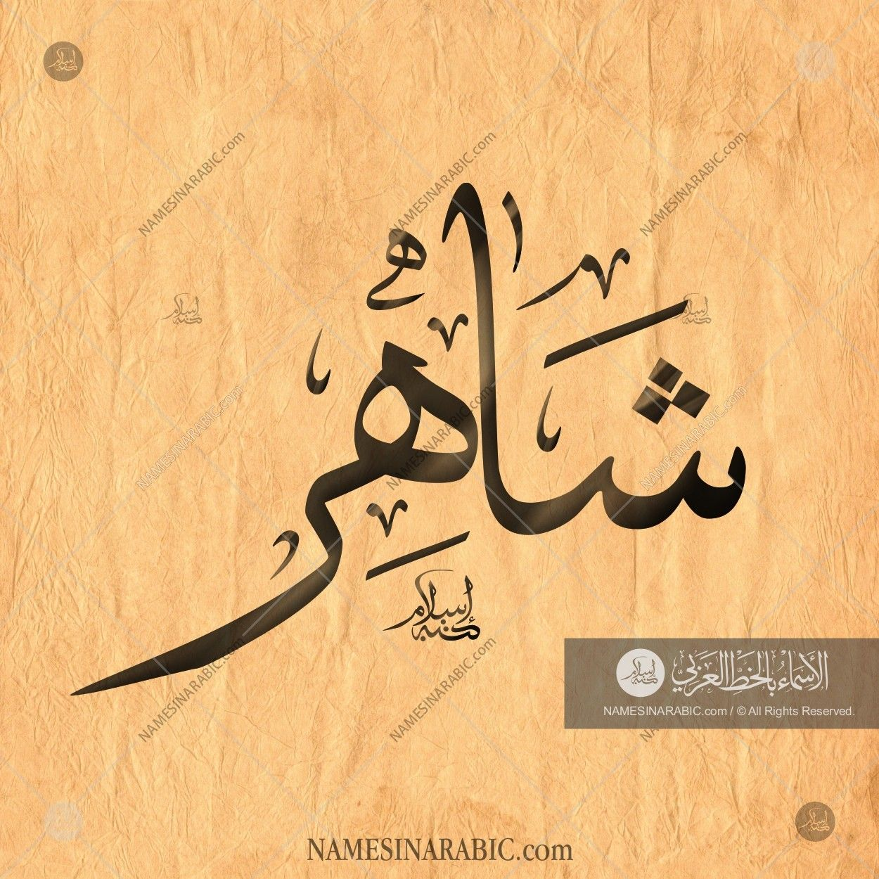 Shahir شاهر Names In Arabic Calligraphy Name 1693 Calligraphy Name Calligraphy Islamic Calligraphy