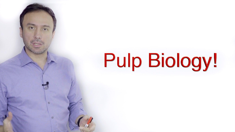 Pulp Biology A Basic Crash Course Crash course, Biology