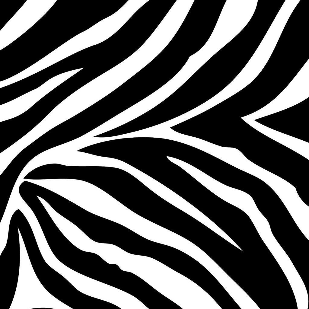 zebra print wallpaper border pinteres rh pinterest ca zebra print clipart zebra print heart clipart