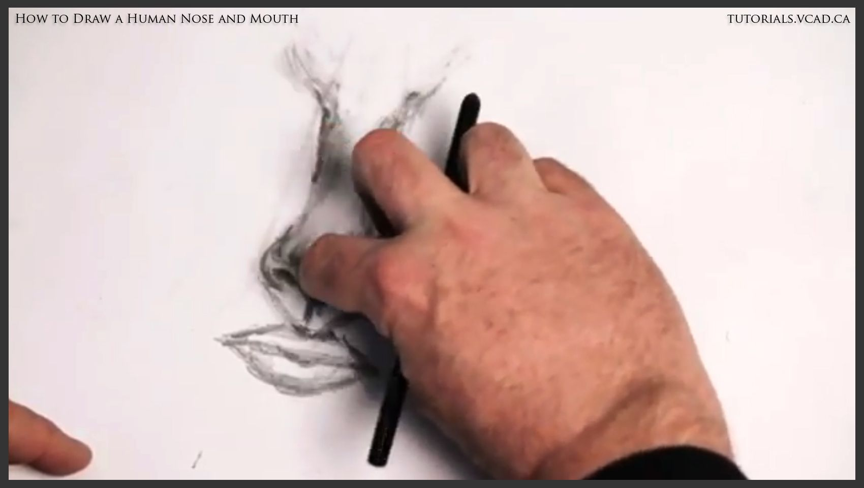 An Easy To Understand Free Online Drawing Tutorial On How To Draw A Human  Nose And Mouth Presented By The Storyboarding, Drawing And Animati