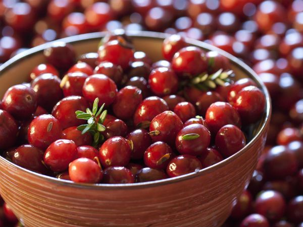 Surprising Health Benefits Of Cranberries Naturipe Farms Berries Cranberry Benefits Food Healthy