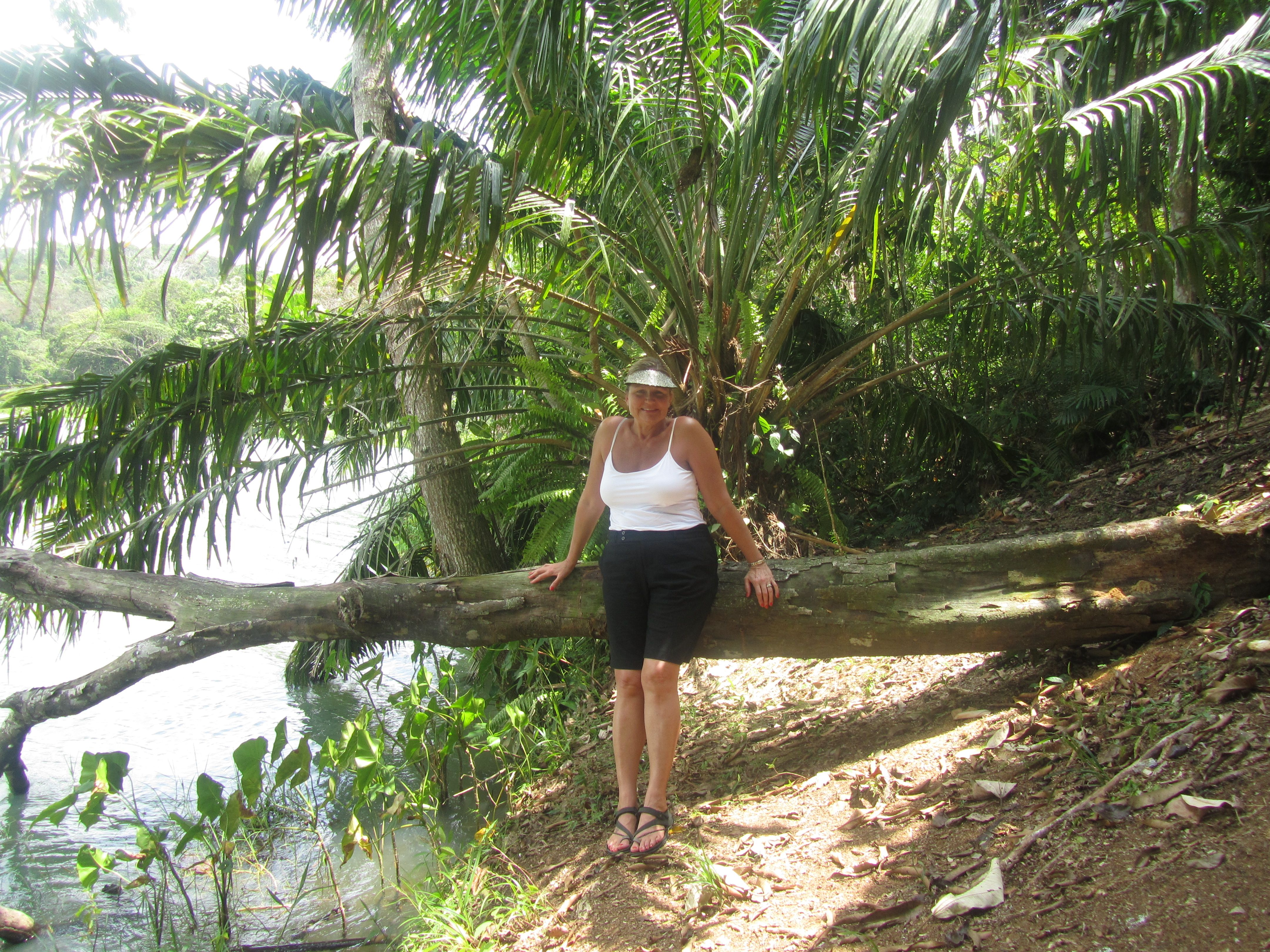 Next to Panama Canal in jungle