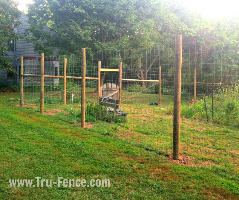 garden fence. Garden Fence \u2013 Hopewell Belle Mead, NJ - Keep Out Deer And Other Animals