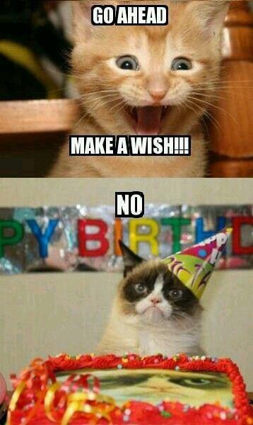 Buon Compleanno Sense Of Humor Pinterest Buon Compleanno E