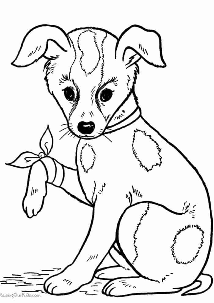 Kitten And Puppy Coloring Pages from Puppy Coloring Pages ...