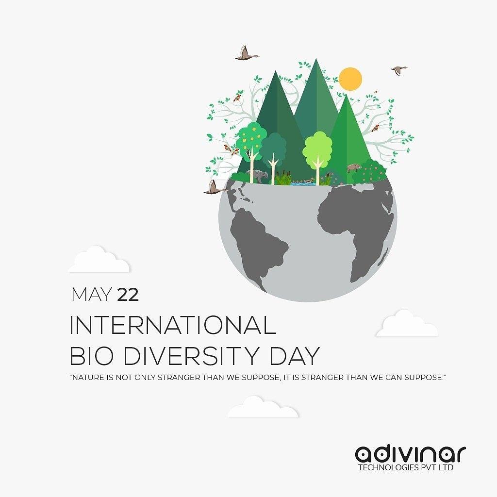 International Bio Diversity Day Internationalbiodiversityday International Biodiversity Day Diversity Poster College Art Environment Design