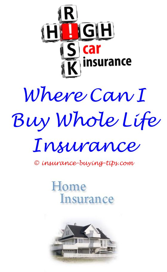 Usaa Insurance Quotes Is Car Insured  Buy Car Insurance Term Life Insurance And Term Life