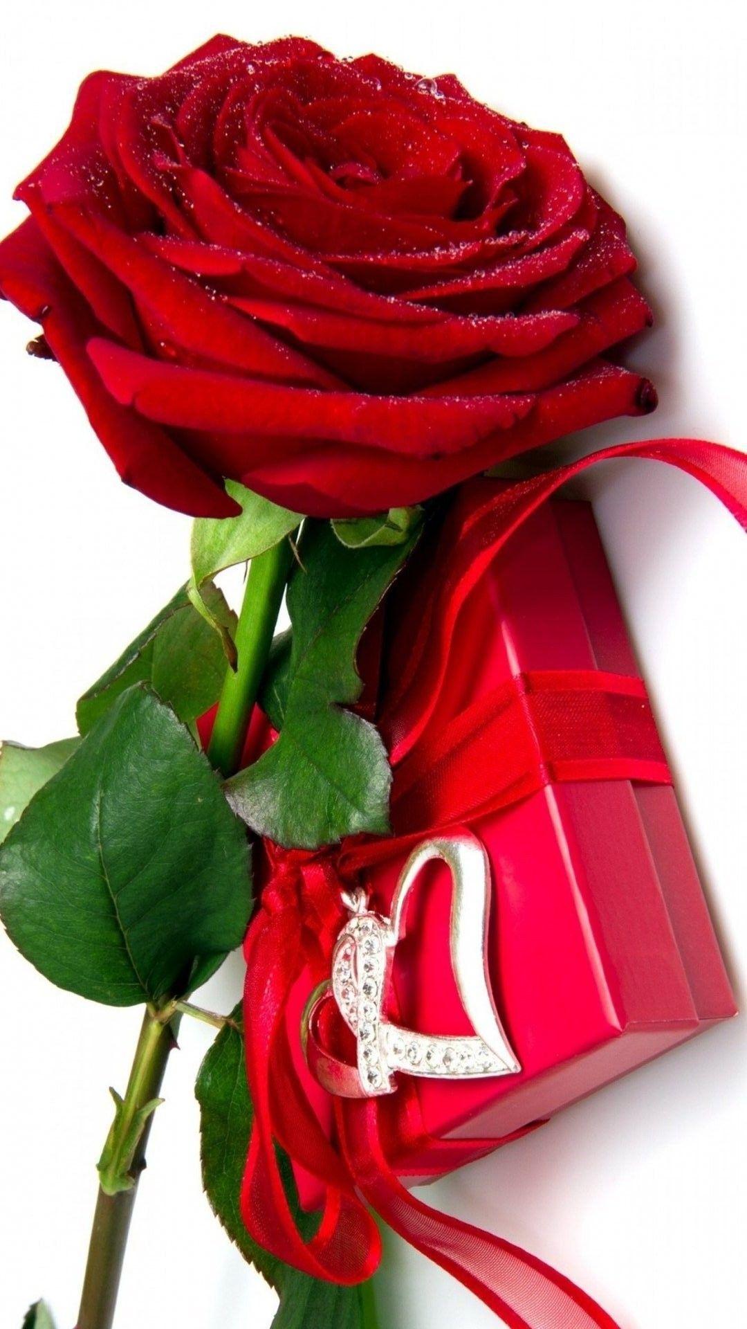 Red Rose Wallpaper Mobile Best Hd Wallpapers Cvetochnye Oboi Kartinki S Serdcem Buket Krasnoj Rozy Pl Red Rose Flower Red Rose Pictures Beautiful Red Roses