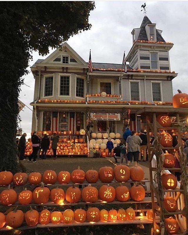 Idea By Jusha Timpson On Fallow Halloween This Year Halloween