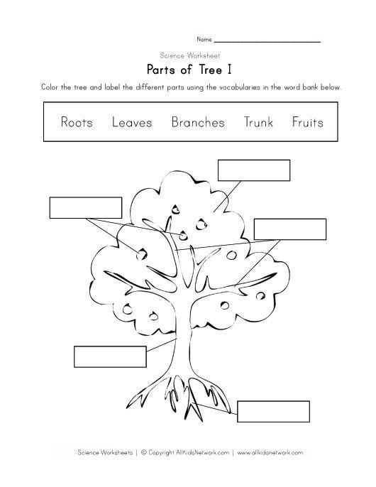 tree worksheet pinterest worksheets learning english and kindergarten. Black Bedroom Furniture Sets. Home Design Ideas