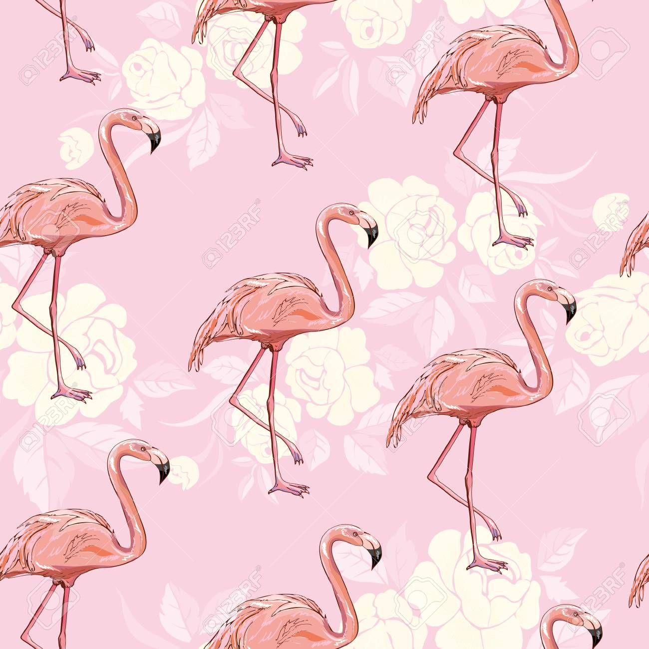 Flamingo Pattern Pink Seamless Vector Background Bird