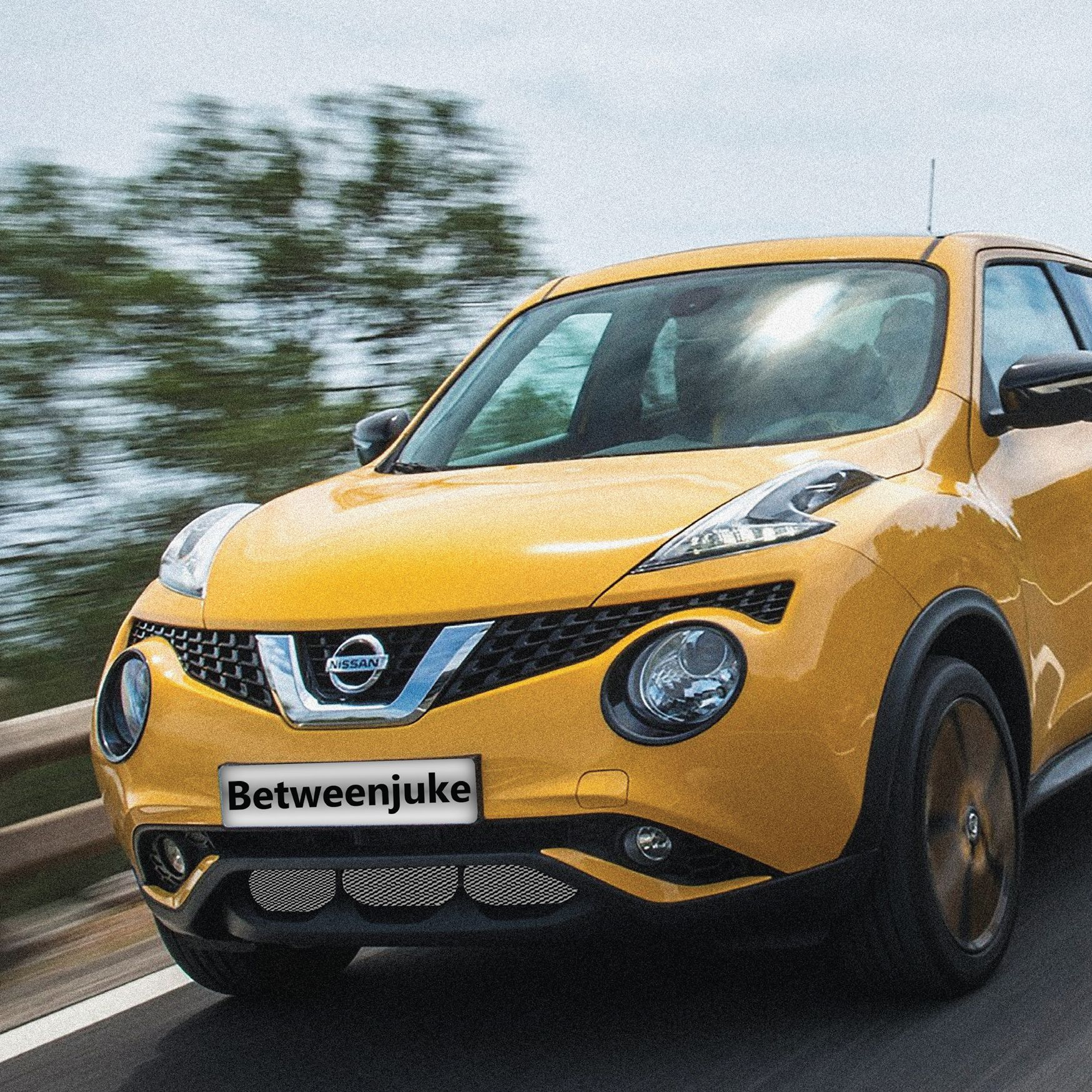 c910e3c3074dc1cec71a08731a671176 Take A Look About Nissan Juke Custom with Fabulous Photos Cars Review