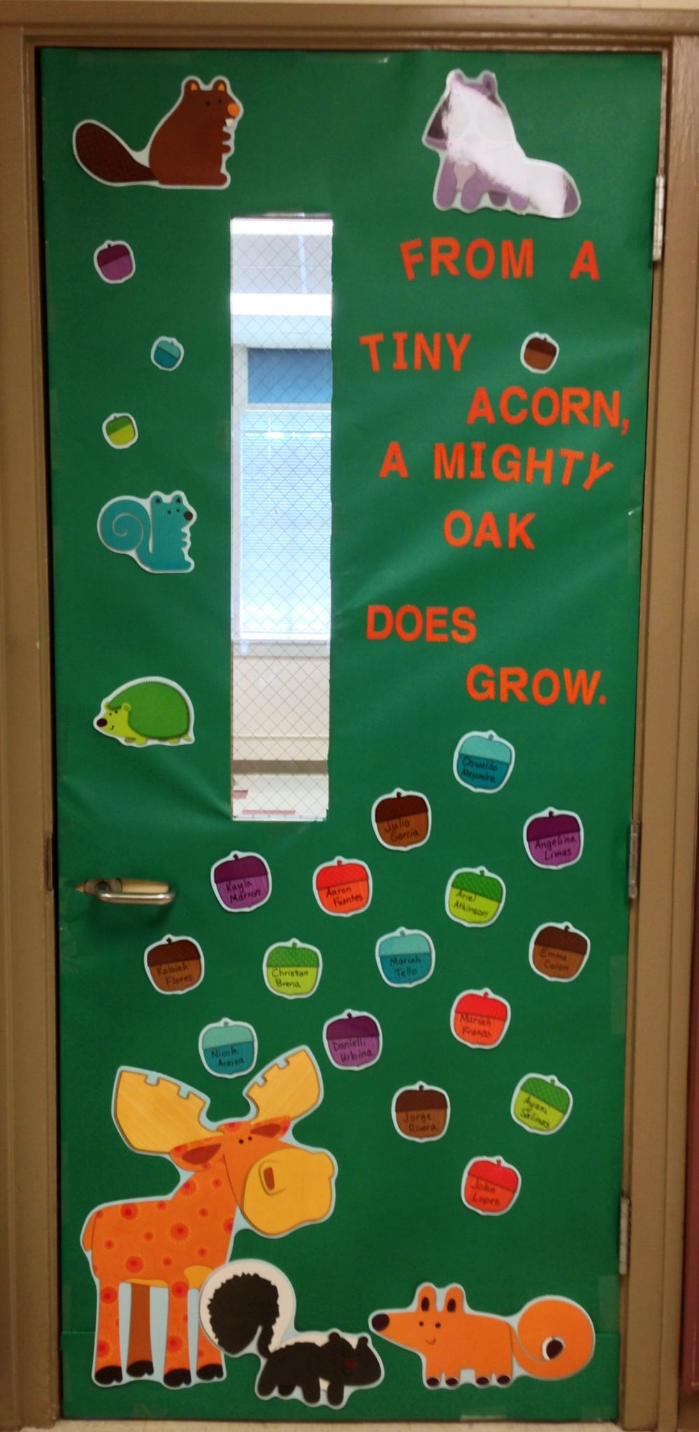 From a tiny acorn... back to school door decoration/bulletin board