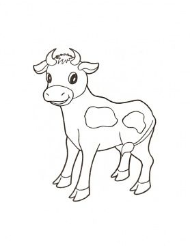 Bull Calf Farm Animal Coloring Pages Cow Coloring Pages Animal Coloring Pages