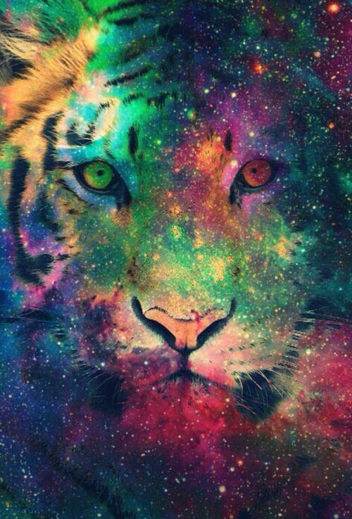 Tiger Galaxy Wallpaper Wallpapers Pinterest Hipster Wallpaper Galaxy Wallpaper Tiger Art