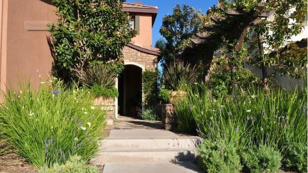 A drought-resistant landscape in Pardee Homes\u0027 Brindle Ridge