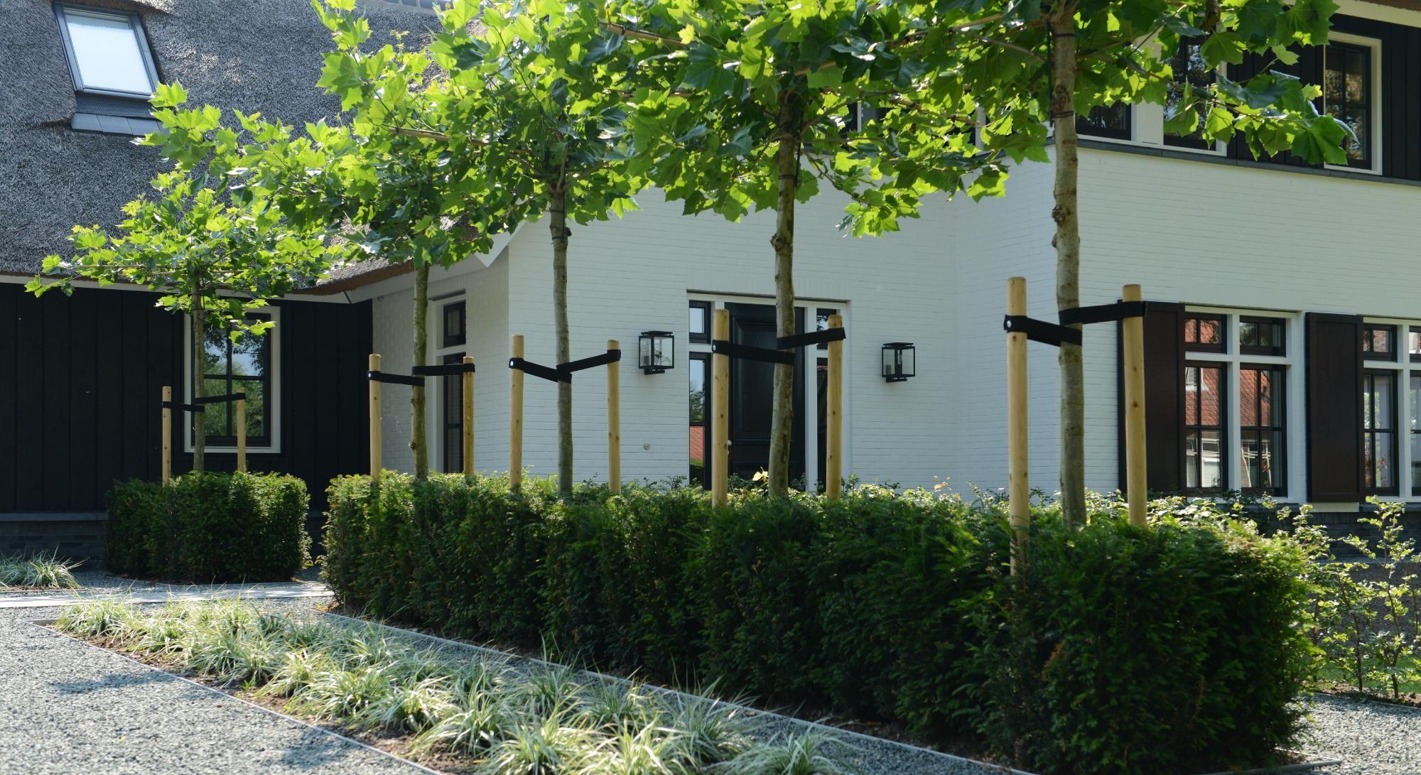 Strakke tuin bij modern landhuis tuin pinterest gardens