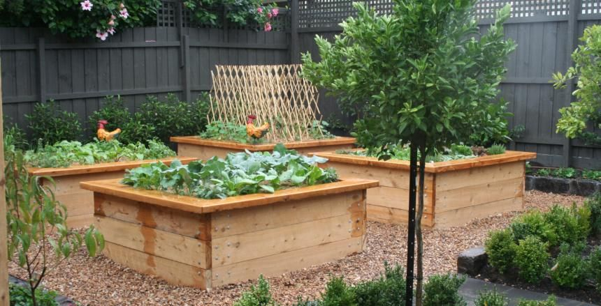 Raised Vegetable Garden Design Australia | Garden Design. Garden Design - garden design website