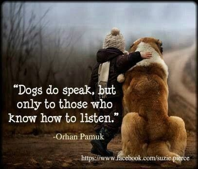 Dogs...So True!