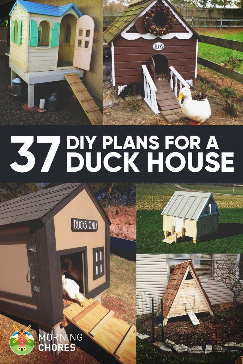 37 free diy duck house coop plans u0026 ideas that you can easily