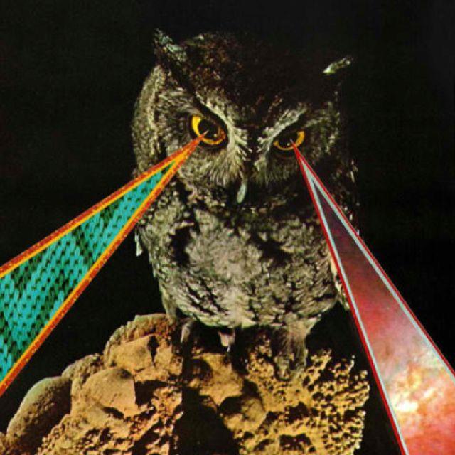 Laser Owl