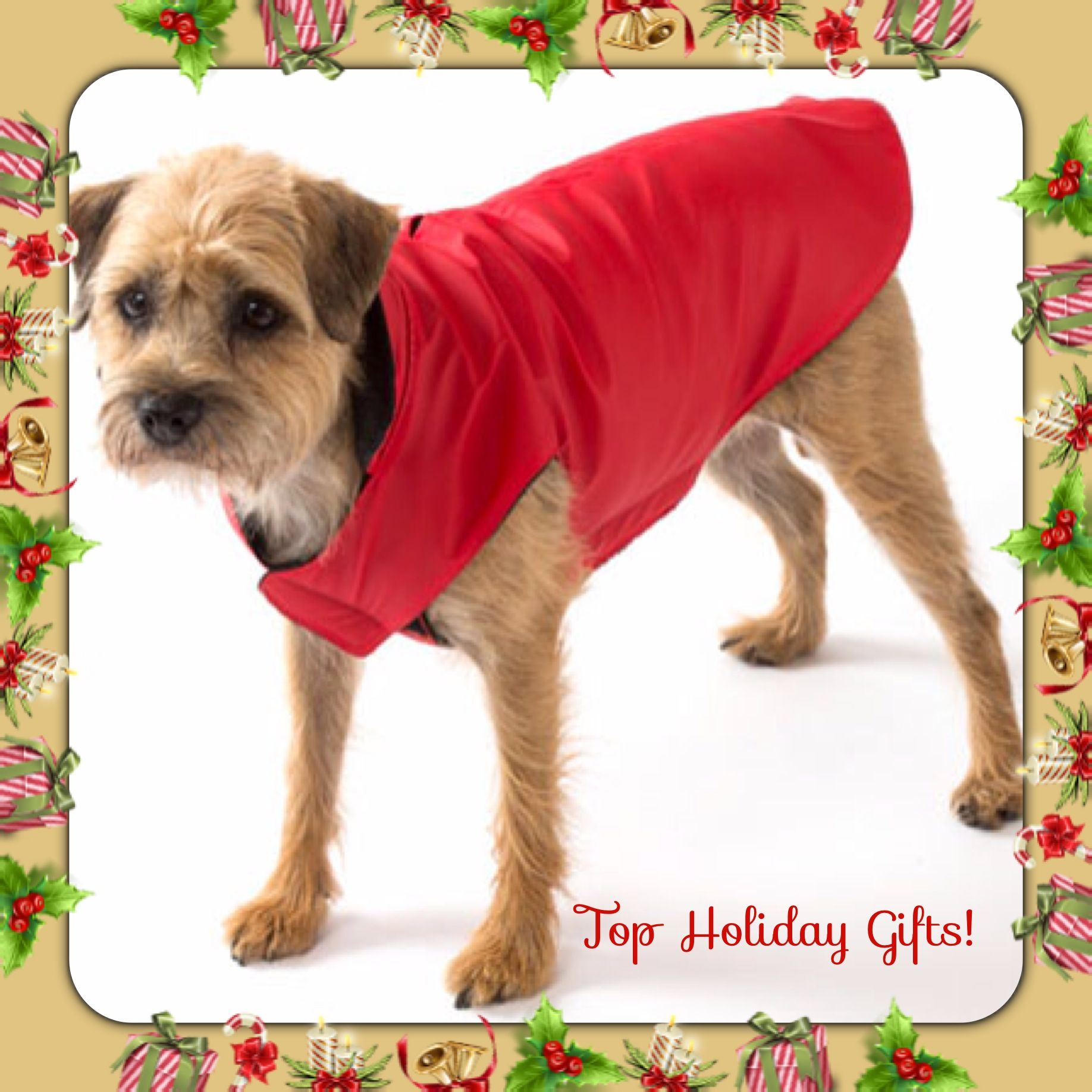 Animal Wrapper Neoprene This Animal Wrapper Will Allow Your Dog To Get Into The Holidays Just Like The Rest Of The Family This To Dog Coats Nyc Dogs Animals
