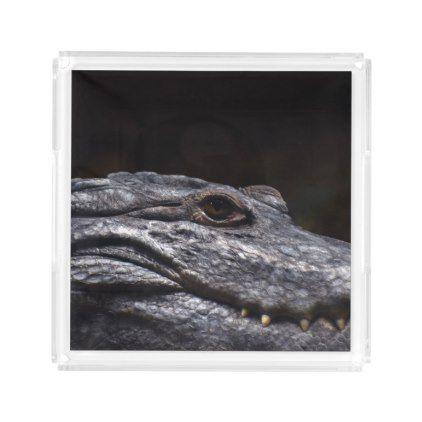 Crocodile Alligator Reptile Scary Animal Aquarium Acrylic Tray