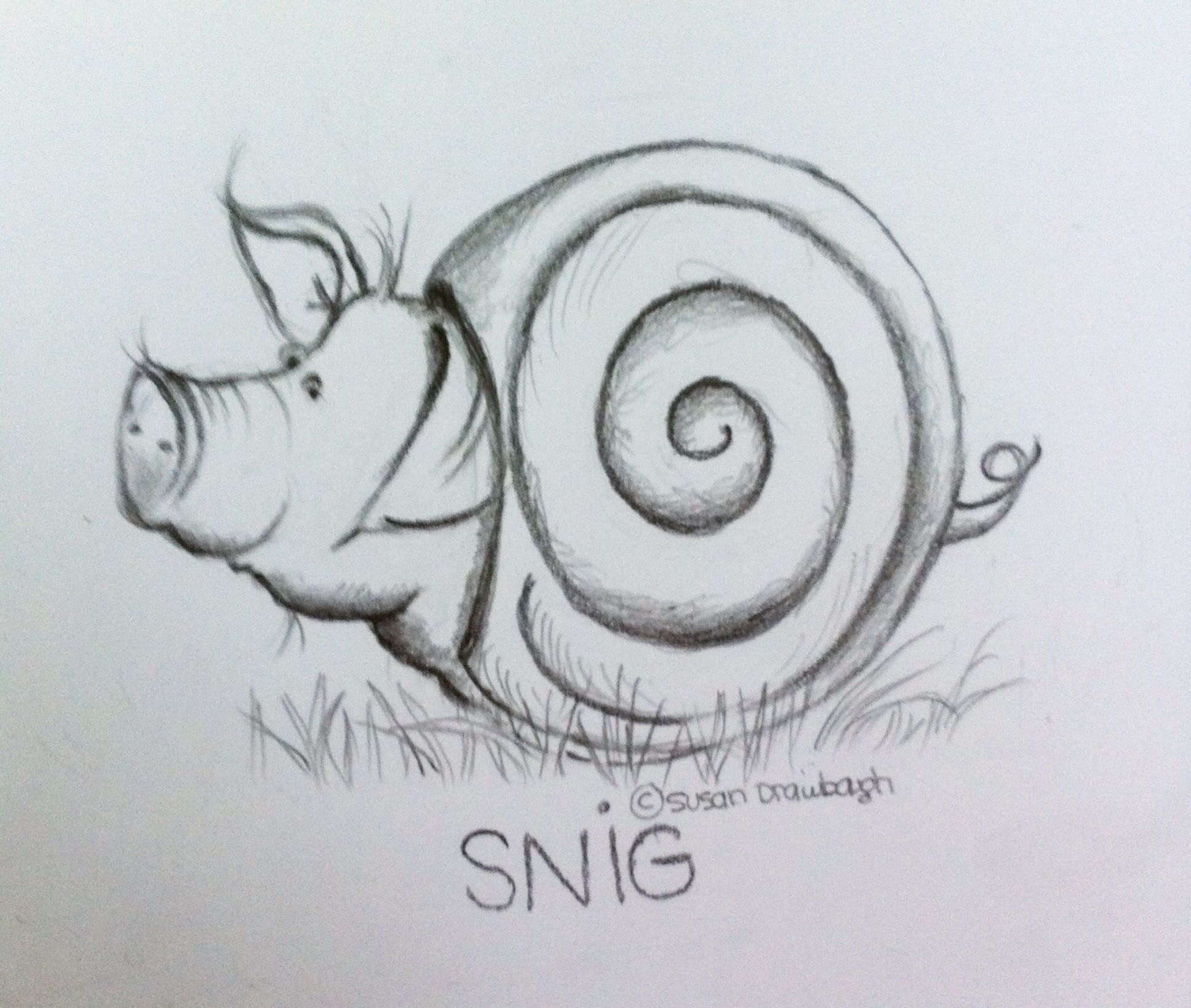 SNIG. An introvert pig in his shell