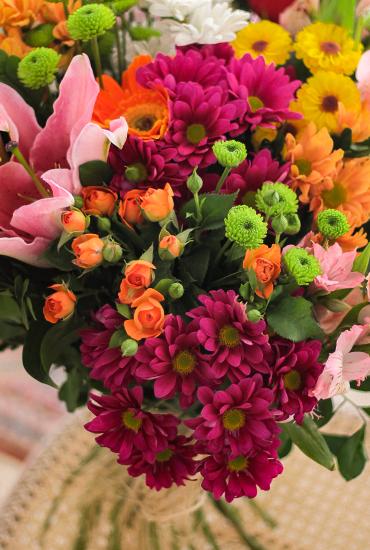 Floricultura em Fortaleza   Bem-me-quer Flores