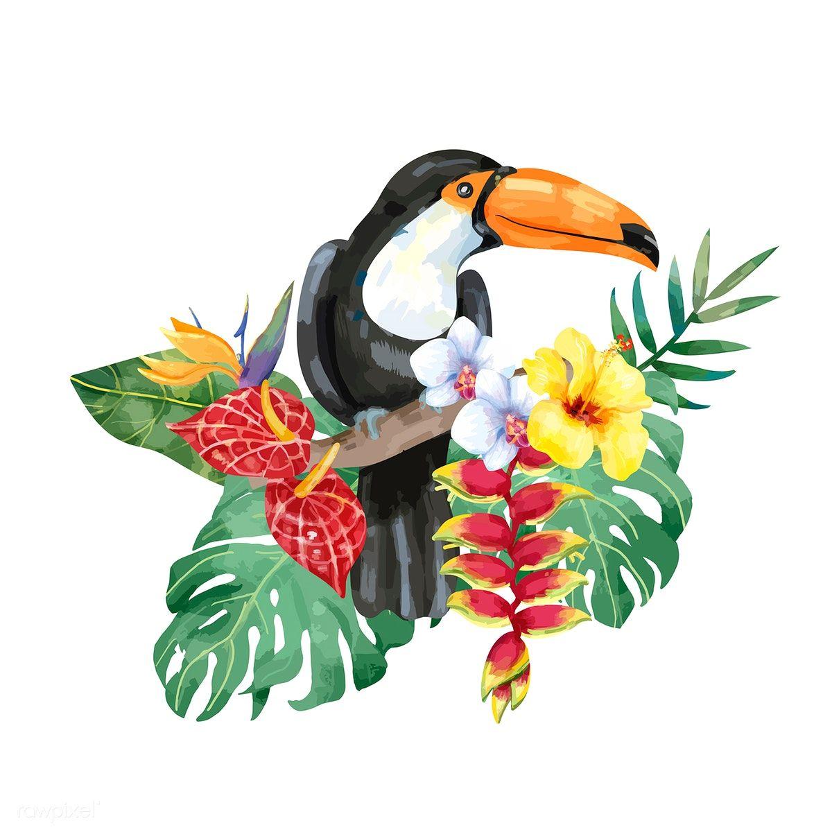 того, тропическая птица рисунок даже называли
